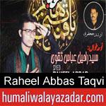 https://www.humaliwalyazadar.com/2018/09/raheel-abbas-taqvi-nohay-2019.html