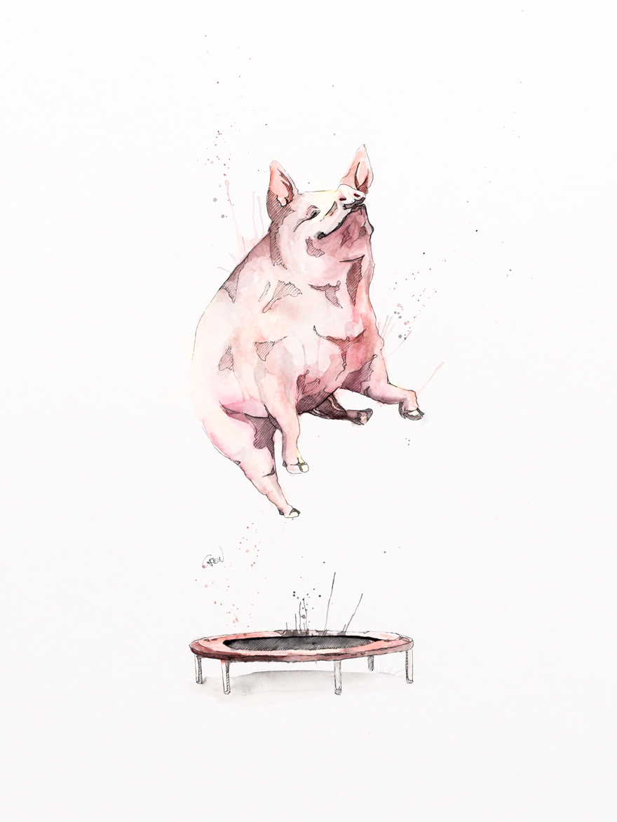 15-Pig-Philipp-Grein-Animal-Paintings-in-Splashes-of-Color-www-designstack-co
