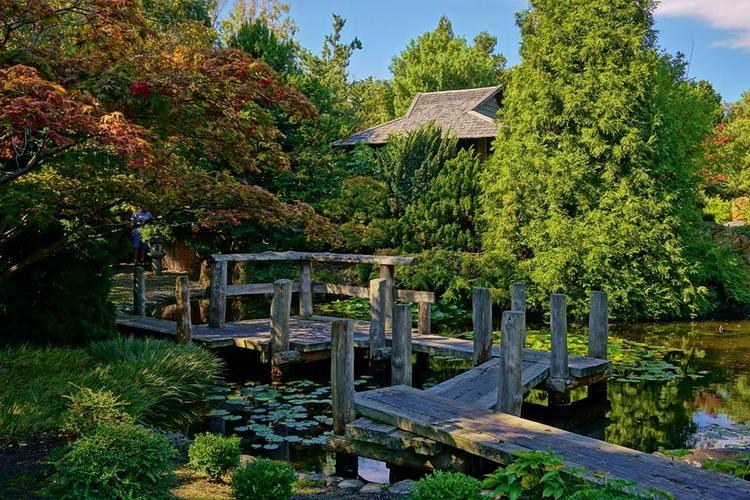 Jardín Japones en Real Jardín Botánico de Tasmania