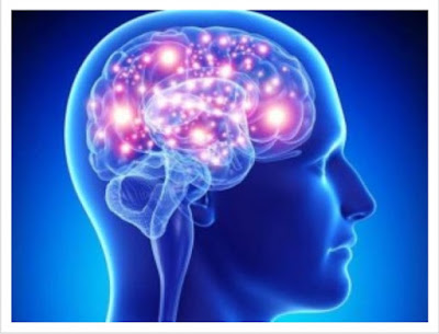 Berikut Otak Kiri dan Otak Kanan bekerja pada manusia