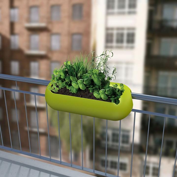 Balkonowe doniczki
