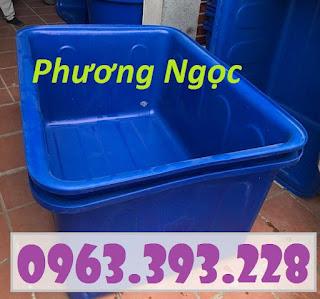 Thùng nhựa chữ nhật nuôi cá, thùng nhựa công nghiệp, thùng dung tích lớn 93409584_578136052801075_3661728729605865472_o