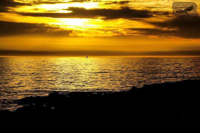 Galicia. Playa