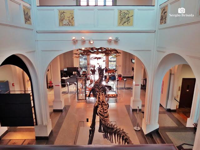 Vista superior do salão de entrada do Museu de Zoologia da USP - Ipiranga - São Paulo