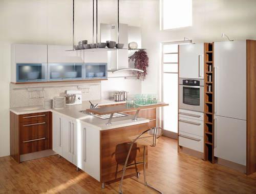 Small Kitchen Design Ideas 2012  Home Interior Designs