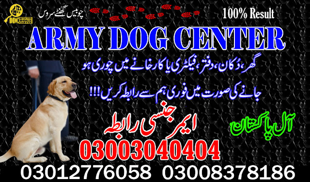Army Dog Center DG Khan