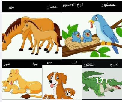 أسماء الحيوانات مع صغارها في صور روعة