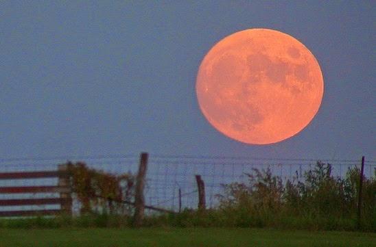 http://en.wikipedia.org/wiki/Full_moon