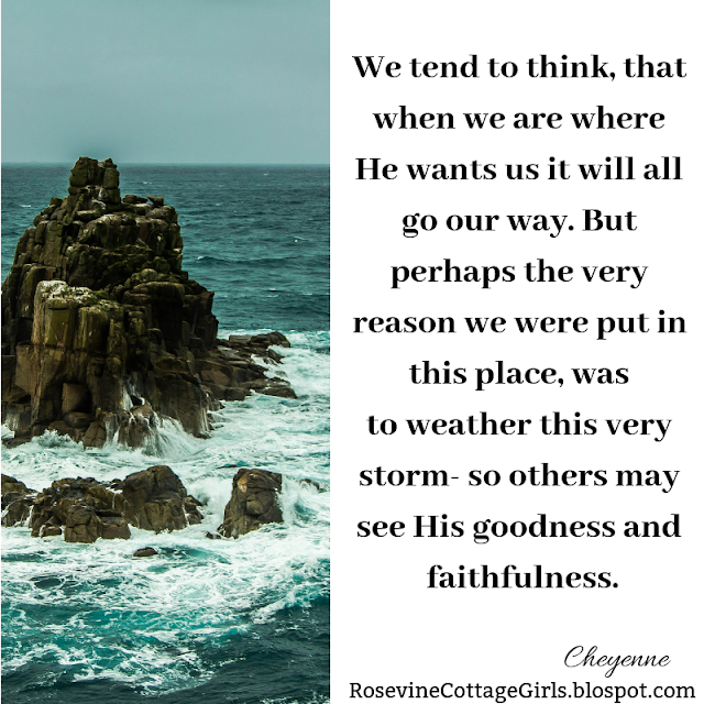 We tend to think, that when we are where He wants us it will all go our way. But perhaps the very reason we were put in this place, was to weather this very storm- so others may see His goodness and faithfulness.