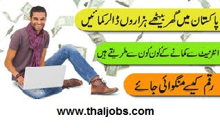Make Money In Urdu, Make Money Online In Urdu