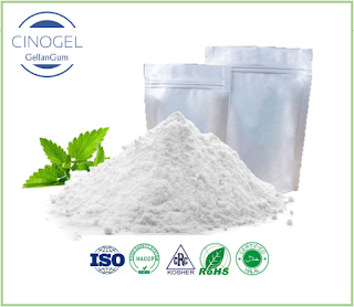 Gellan Gum Manufacturer and Supplier - CINOGEL BIOTECH