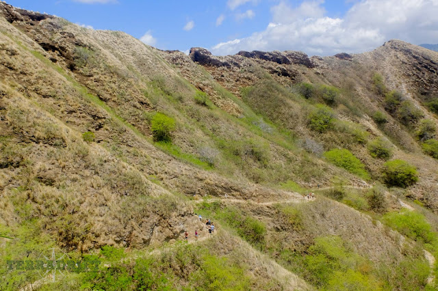The trail up Diamond Head is less arduous than Koko Head, but enjoyable and worth the time and effort