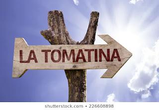 la tomatina climbing the pole,la tomatina buñol españa,la tomatina bunol (valencia),la tomatina barcelona,la tomatina bunol,la tomatina festival spain 2020,la tomatina vlog,wanderlust,big tomato fight in spain,la tomatina festival in spain,spain festival,tomato fesitval,world's largest tomato fight