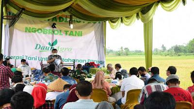 PT. Daun Agro Nusantara Serap Hasil Pertanian Dukung Produktivitas Pertanian di Deli Serdang