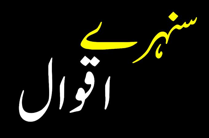 100 Best Quotes In Urdu | Urdu Quotes