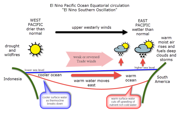 The Sustainable Schoolteacher  What Is El Nino  Anyway  A