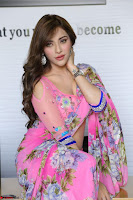 Actress Angela Krislinzki in Pink Saree Blouse Exclusive Pics March 2017 ~  033.JPG