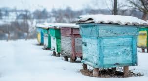 Διαχείμασή μελισσών (Ξεχειμώνιασμα)