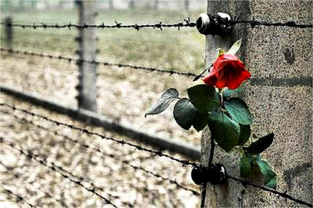 Giornata della Memoria: il 27 Gennaio il Mondo ricorda