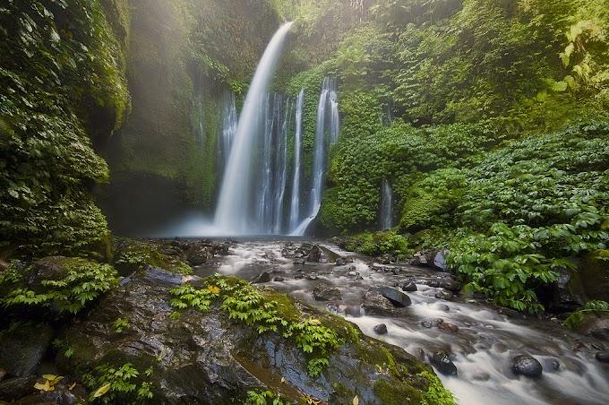 Tours Waterfall Sendang Gile and Tiu Kelep Senaru