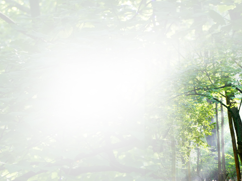 Powerpoint nature backgrounds free Just for Sharing