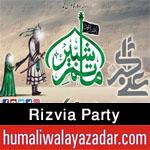 https://www.humaliwalayazadar.com/2014/10/rizvia-party-nohay-1993-to-2015.html