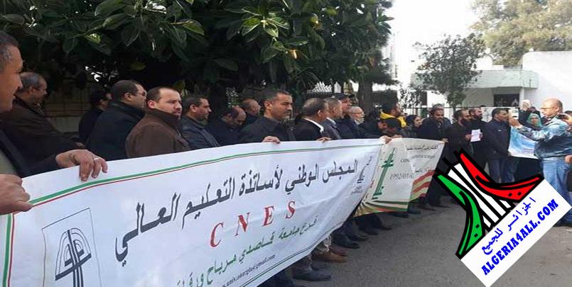 صور اضراب اساتذة التعليم العالي في الجزائر