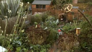 Aly's garden in November