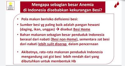 penyebab kekurangan Fe di Indonesia