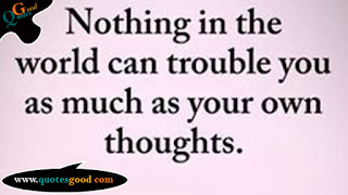 life quote -Nothing in the World can trouble you as much