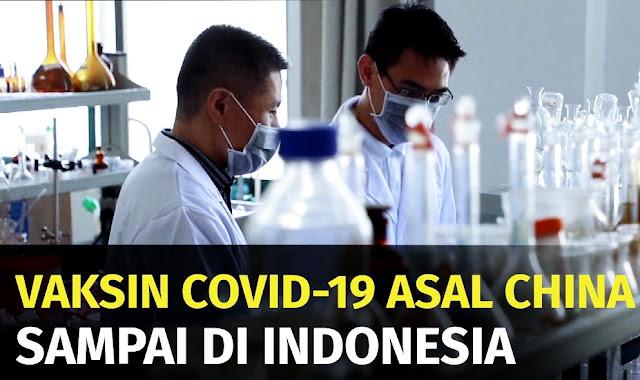 IDI: Vaksin China Sinovac Masih Uji Klinik, Tak Pantas Ditawarkan