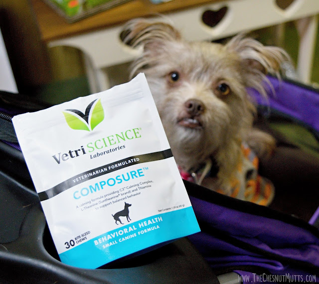 VetriScience Composure Bite-Sized Chews small canine formula