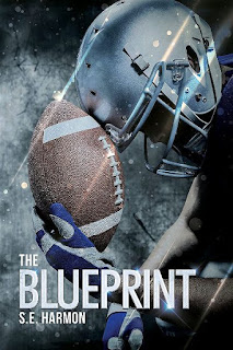 The blueprint | Rules of possession #1 | S.E. Harmon