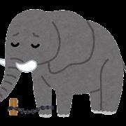 捕まった象のイラスト