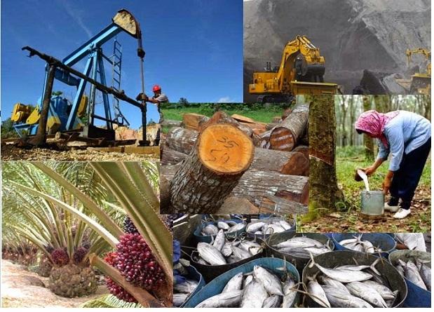 Sumber daya alam Natural resources - Jenis Jenis Sumber Daya Alam