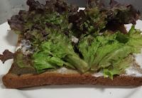 Lettuce over mayonnaise spread bread for veg club sandwich recipe