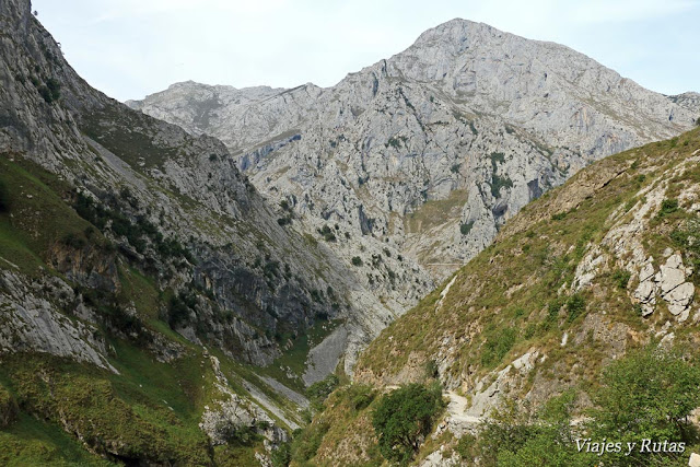 Canal del Tejo