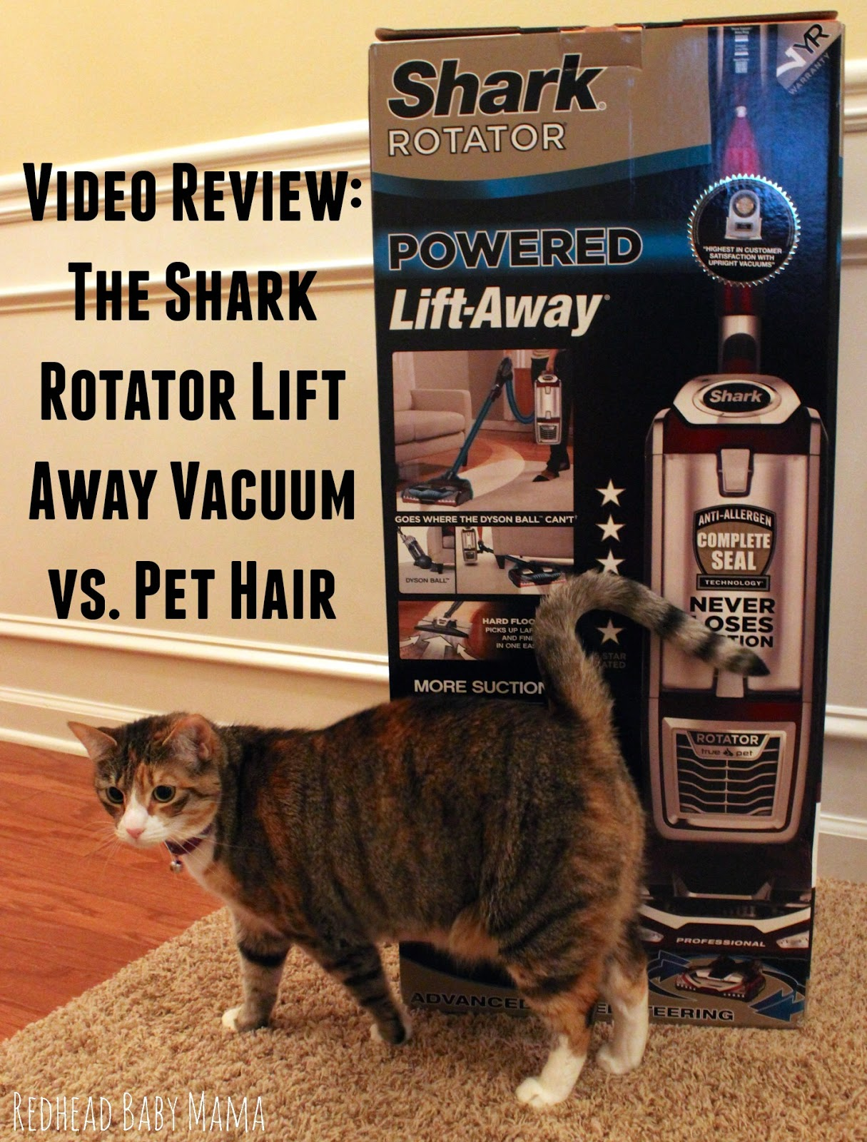 The Shark LiftAway Vacuum is a transformer! Takes on Pet hair with no problem... BETTER than a Dyson Animal.