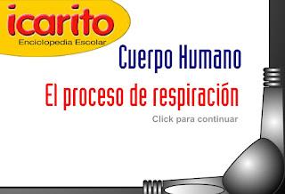 http://www.ceiploreto.es/sugerencias/animaciones/ciencias/respiracion.swf