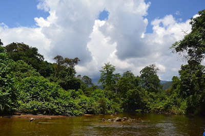 Tepian sungai dan langit yang cerah