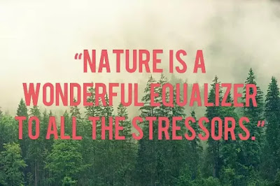 image of motivation to exercise, image of nature quote