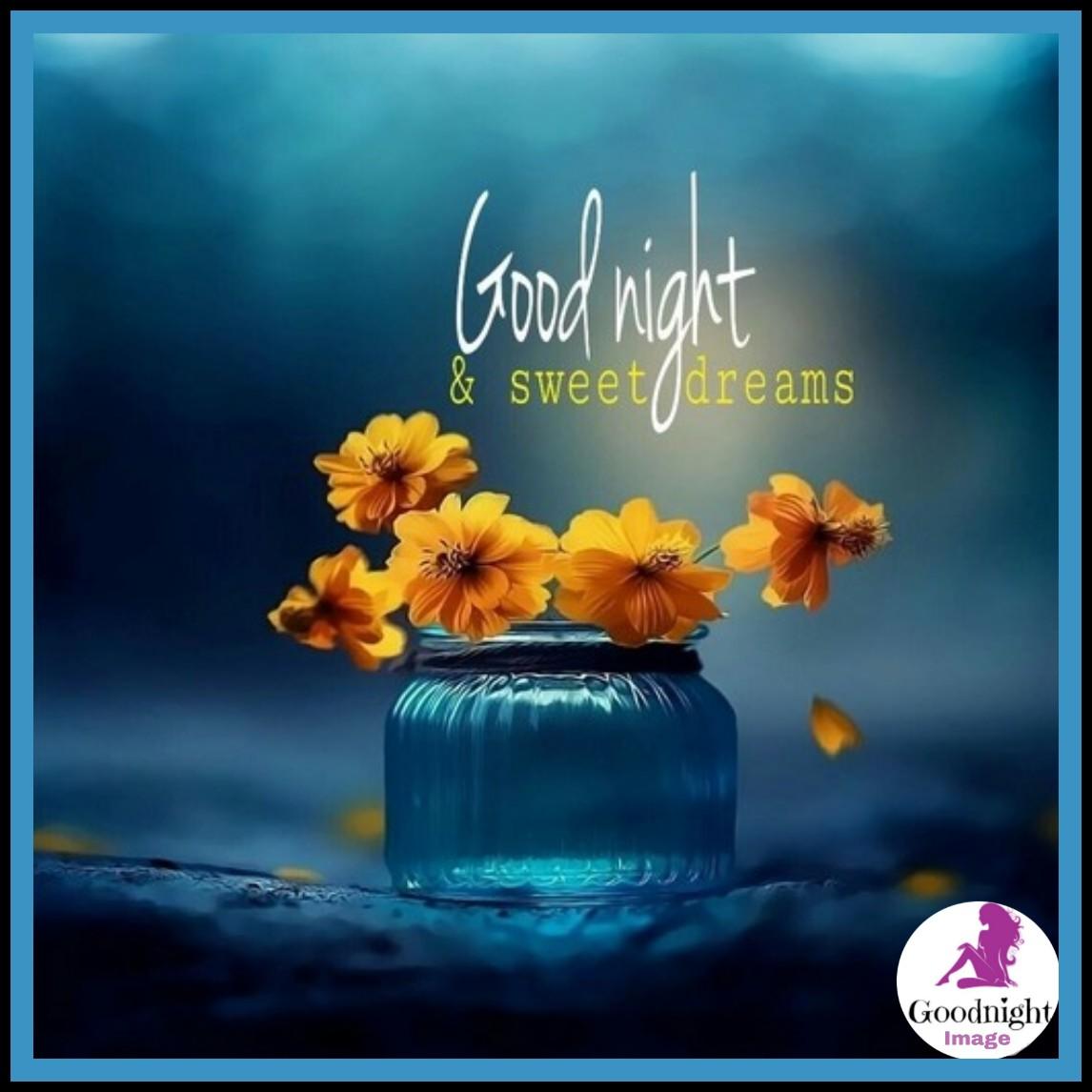 Good Night%2BImage 29