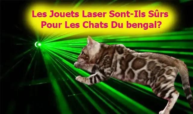 Les Jouets Laser Sont-Ils Sûrs Pour Les Chats Du bengal?