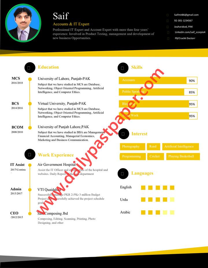 Professional CV Template Microsoft Word Download