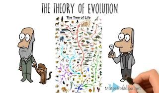 Contoh soal teori evolusi dan implikasi beserta pembahasannya