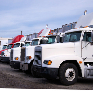 Trucks from a fleet managed by TruckLogics Trucking management software