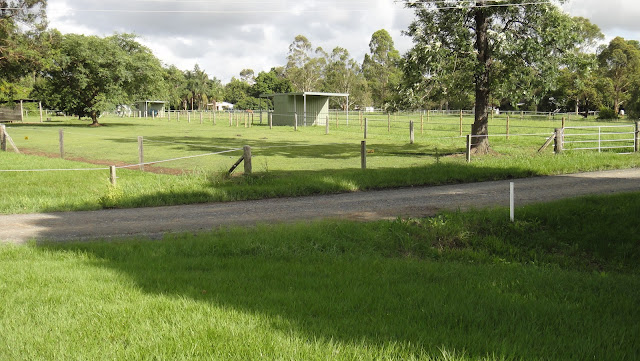 DDSH agistment seen from Burpengary Equestrian Center