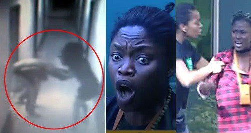 #BBNaija: Bisola and Debbie-Rise Physically Fight, After Debbie Called Her a Lunatic.  [Download Video]