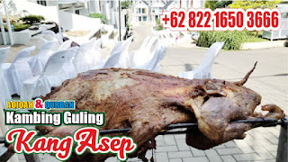 Catering Kambing Guling di Lembang, catering kambing guling lembang, kambing guling di lembang, kambing guling lembang, kambing guling,