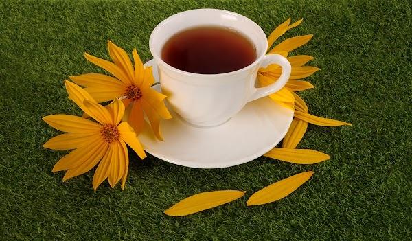 Les Bienfaits Sur La Santé Du Thé De Pissenlit: 9 Raisons Devraient Essayer De Boire Ce Thé